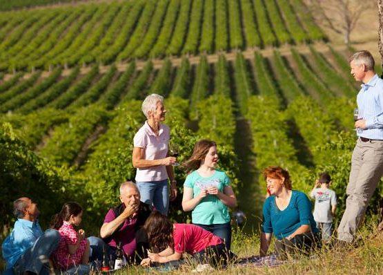 Thorn Clarke Wines