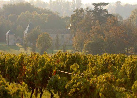 Chateau Paillet-Quancard