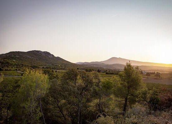 Les Hauts de Castellas